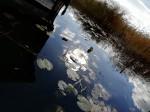 I laghi vicino a Berlino