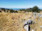 paesaggi dal signore degli anelli Nuova zelanda